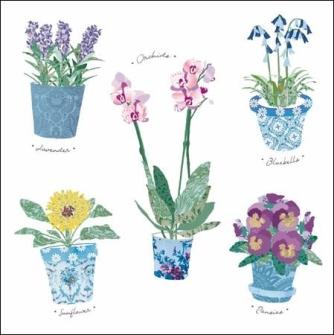 Plant a garden