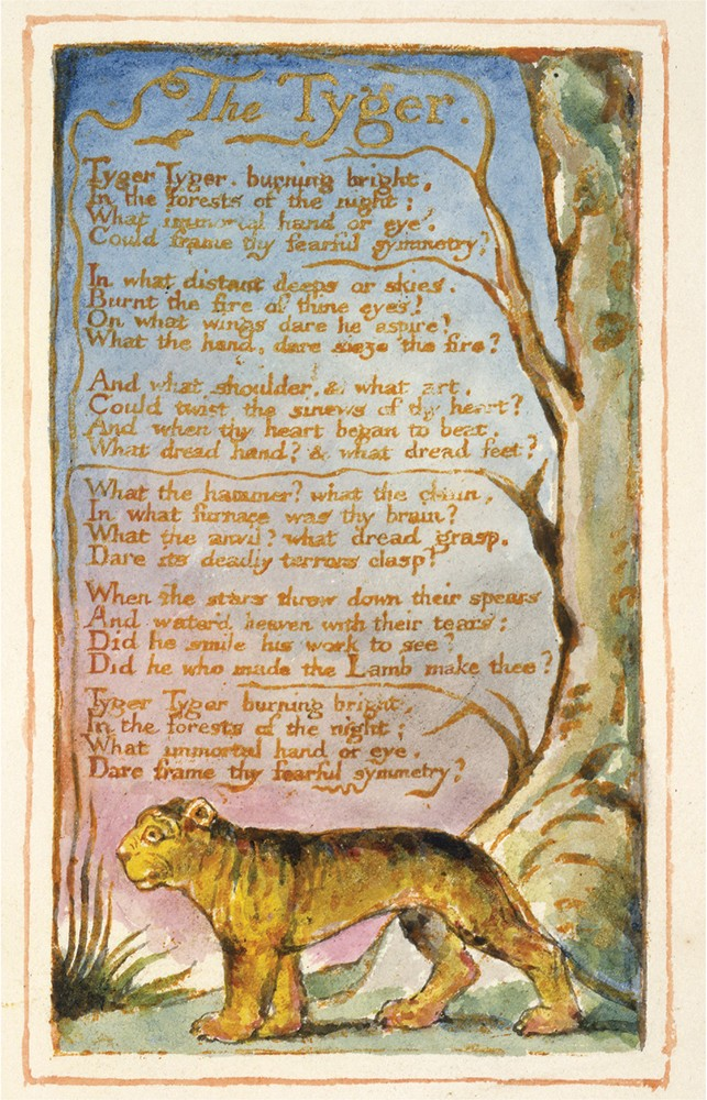 a literary analysis of the tyger by william blake The lamb and tyger - free download as word doc (doc / docx), pdf file (pdf), text file (txt) or read online for free literary analysis of william blake's the lamb and the tyger.
