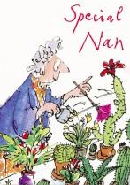 Nan Watering Plants
