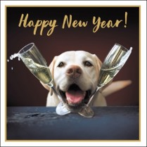 Doggy new year