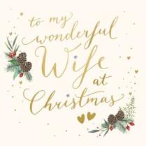 To my wonderful Wife