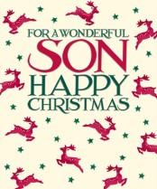 Wonderful Son
