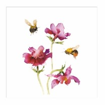Bees and anemones