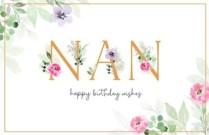 Happy Birthday, Nan