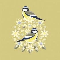 Blue tit and blooms