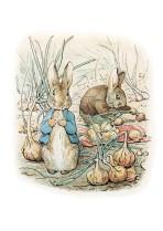 Peter Rabbit among the turnips