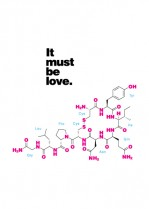 The molecule of love