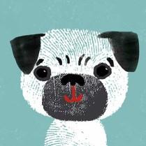 Pug Boy