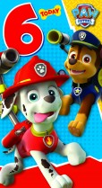 Paw Patrol 6 today
