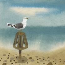 Seagull, Aldeburgh