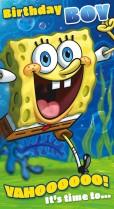 SpongeBob birthday boy