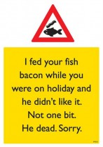 I fed your fish