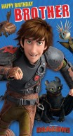 How to train your dragon - Brother