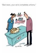 Unfunny cat
